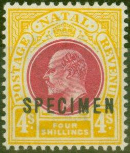 Natal 1902 4s Dp Rose & Maize Specimen SG139s V.F Mtd Mint