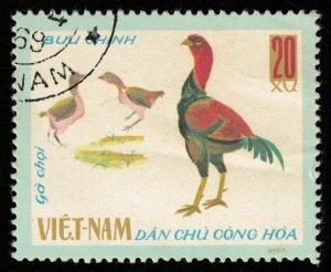 Birds (T-4922)
