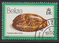 1980 Belize - Sc 471 - used VF - Cypraea Zebra
