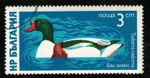 Bird Bulgaria 3ct (TS-691)
