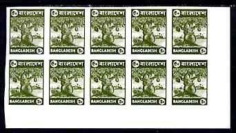 Bangladesh 1976 Jack Fruit 5p unmounted mint IMPERF corne...