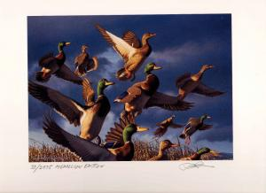 OREGON #17 2000 STATE DUCK STAMP PRINT Med Ed + 2 stamps by Robert Steiner