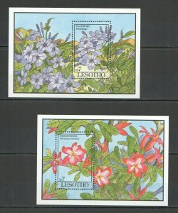 QQ056 LESOTHO BEAUTIFUL FLOWERS LEADWORT DESERT ROSE FLORA 2BL MNH