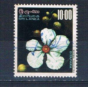 Sri Lanka 498 Used Wormia triquetra flower 1976 (S1151)+
