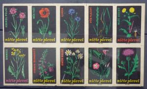 Match Box Labels! flora flower flowers nature czechoslovakia GJ50