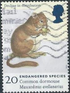 Great Britain 1785 (used) 20p endangered species: common dormouse (1998)