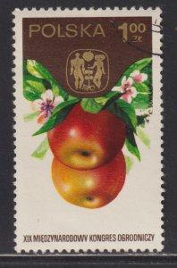 Poland 2051 Apple 1974