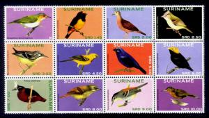 Suriname Sc# 1461 MNH Birds 2014 (Block of 12)