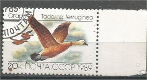 RUSSIA, 1989, CTO 20k Ducks Scott 5785