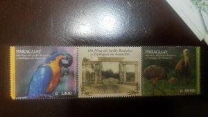 O) 2014 PARAGUAY,BOTANICAL AND ZOOLOGICAL GARDEN OF ASUNCIÓN,PARROT.