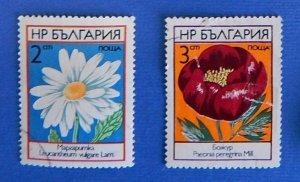 Flowers (R-167)