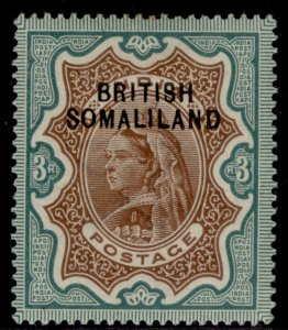 SOMALILAND PROTECTORATE EDVII SG12, 3r brown & green, M MINT. Cat £32.