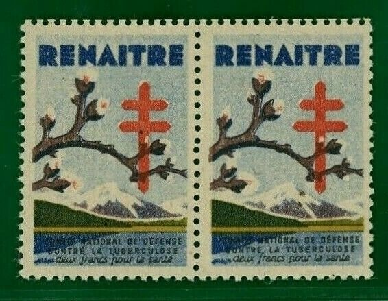 FRANCE Anti-Tuberculosis CHARITY Stamps Mint MNH Pair DISEASE MEDECINE 2WHITE57