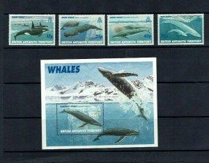 British Antarctic Territory: 1996, Whales, MNH set + M/S