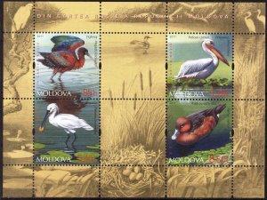 Moldova 2011 Fauna of Moldova Birds S/S MNH**