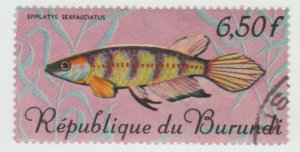 194  Fish
