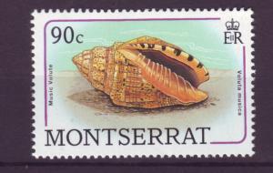 J12035 JL stamps 1988 montserrat mnh from a set #689 seashell