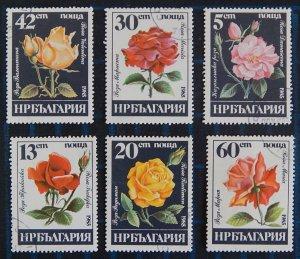 Flowers, Bulgaria, (2563-Т)