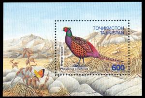 Tajikistan 1996 Scott #90 Mint Never Hinged