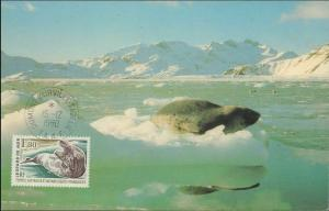 French Southern & Antarctic Territory #218, Antarctic Cachet and/or Cancel