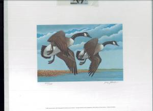 MISSISSIPPI #7 1982 STATE DUCK STAMP PRINT CANADA GEESE by Jerry Johnson