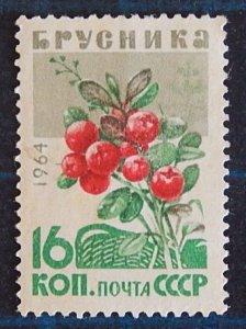 Berries, (2516-Т)