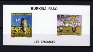 Burkina Faso 1996 Locust Mi1420&1422 Compound SS Imperf  MNH