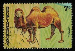 Animals (T-5031)