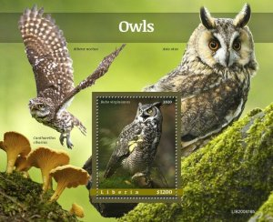 YEAR 2020/10- LIBERIA- OWLS         1V complet set    MNH ** T
