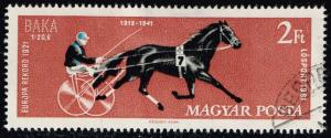 Hungary #1411 Race Horse Baka; CTO (0.30)
