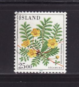 Iceland 587 U Flowers (B)