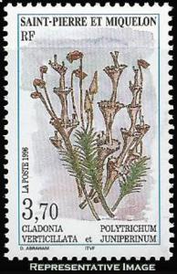 Saint Pierre & Miquelon Scott 625 Mint never hinged.