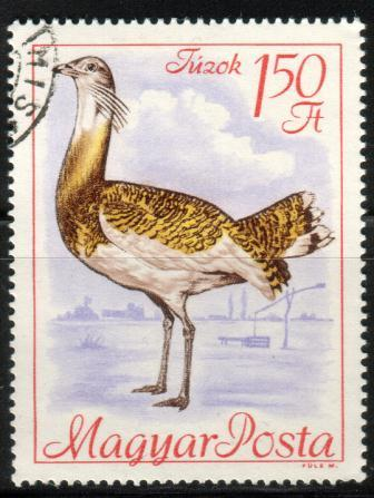 Bird, Great Bustard, Hungary stamp SC#1894 Used