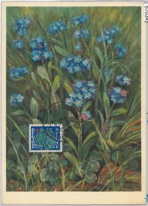 57034 - BELGIUM - POSTAL HISTORY: MAXIMUM CARD 1951 - FLOWERS