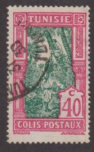 Tunisia Q15 Gathering Date Fruit 1926