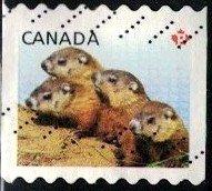 Juvenile Wildlife, Four Woodchuck Pups, Canada SC#2604 used