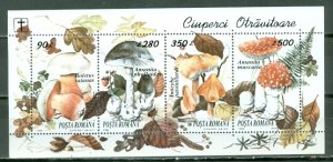 ROMANIA 1994 MUSHROOMS  #3936 SHEET MNH...$2.00