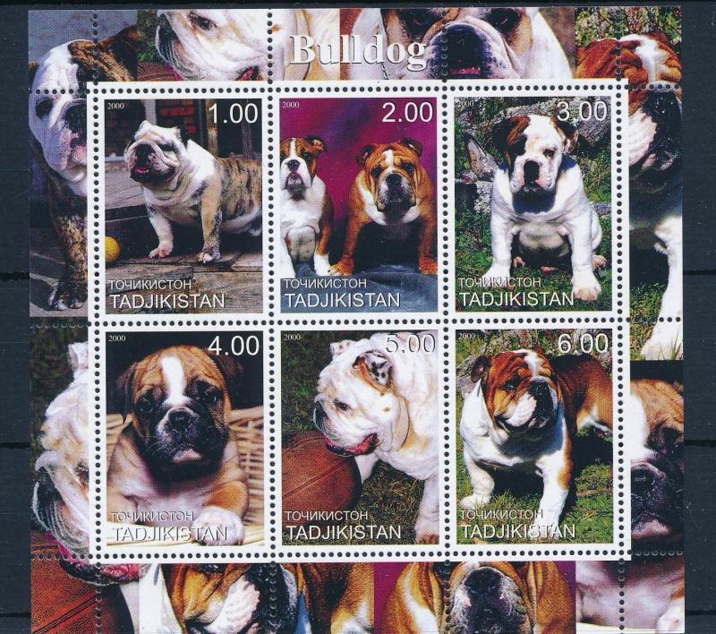 [62265] Tajikistan 2000 Dogs - Bulldog Sheet MNH