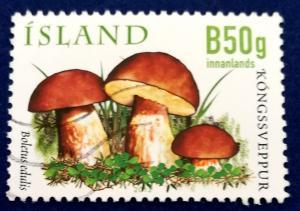 Iceland Mushroom Stamp Scott # 1285 Used (I620)