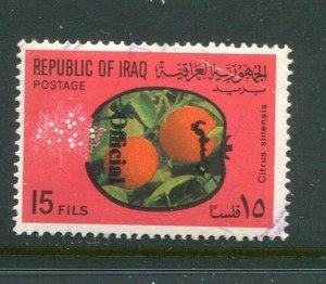 Iraq #O242 Used