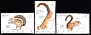 Namibia - 2020 Squirrels Set MNH**