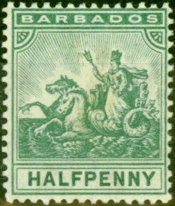 Barbados 1905 1/2d Green SG136 Fine Lightly Mtd Mint