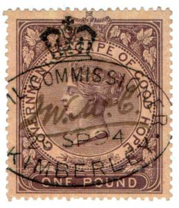 (I.B) Cape of Good Hope Revenue : Duty Stamp £1 (Kimberley)