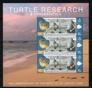 ASCENSION IS - 2009 Turtle Research and Conservation  M2727