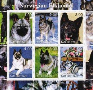 Tajikistan 2000  DOGS NORWEGIAN ELKHOUND Sheetlet (6) MNH