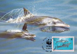 Niue 1993 Maxicard Sc #651 20c Rough-toothed dolphin WWF