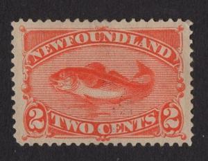 Newfoundland  #48  used   1880  fish   2c red orange