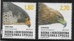 2019    BOSNIA  -   EUROPA  -  BIRDS  -  UMM