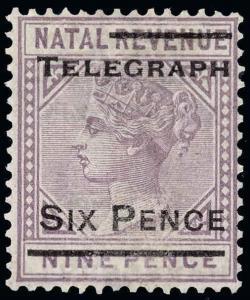 Natal Scott T14b Gibbons T14b Mint Stamp