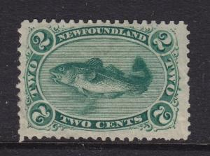 Newfoundland Scott # 24a VF-OG lightly hinged scv $ 140 ! see pic !